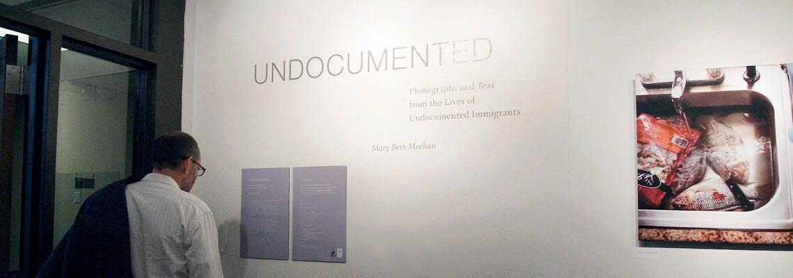 individual_undocumented2010.3